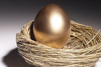 Image of golden egg in nest